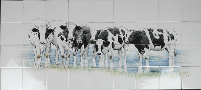 RH24-6, Cows standing in the water