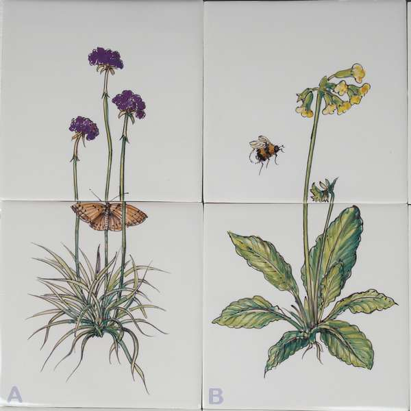 RH2-8 Herbs with insects