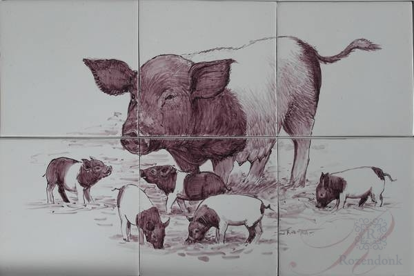 RH6-Rk, Mini pigs in black and white