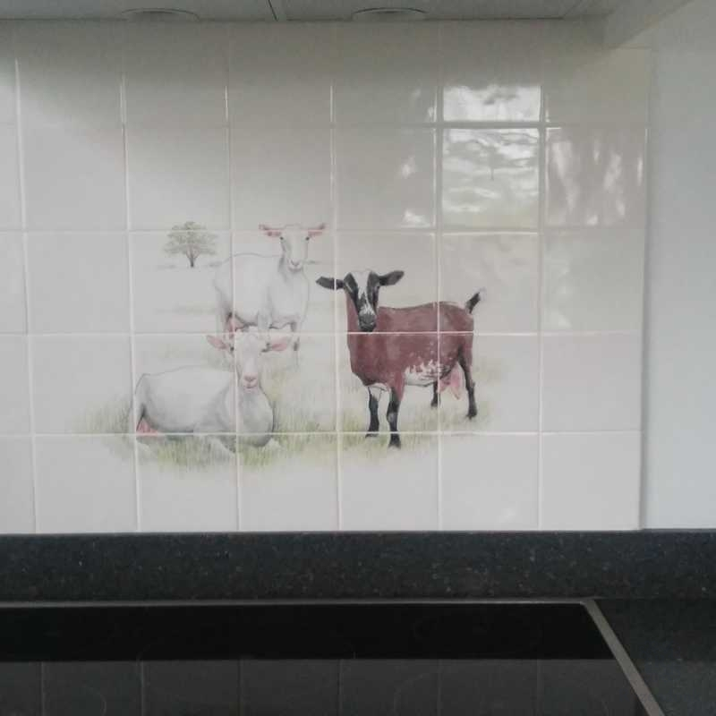 A farmer that loves his goats on tiles