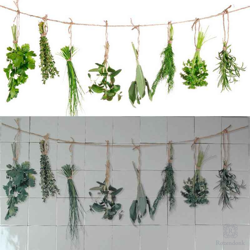 Herbs printed on tiles