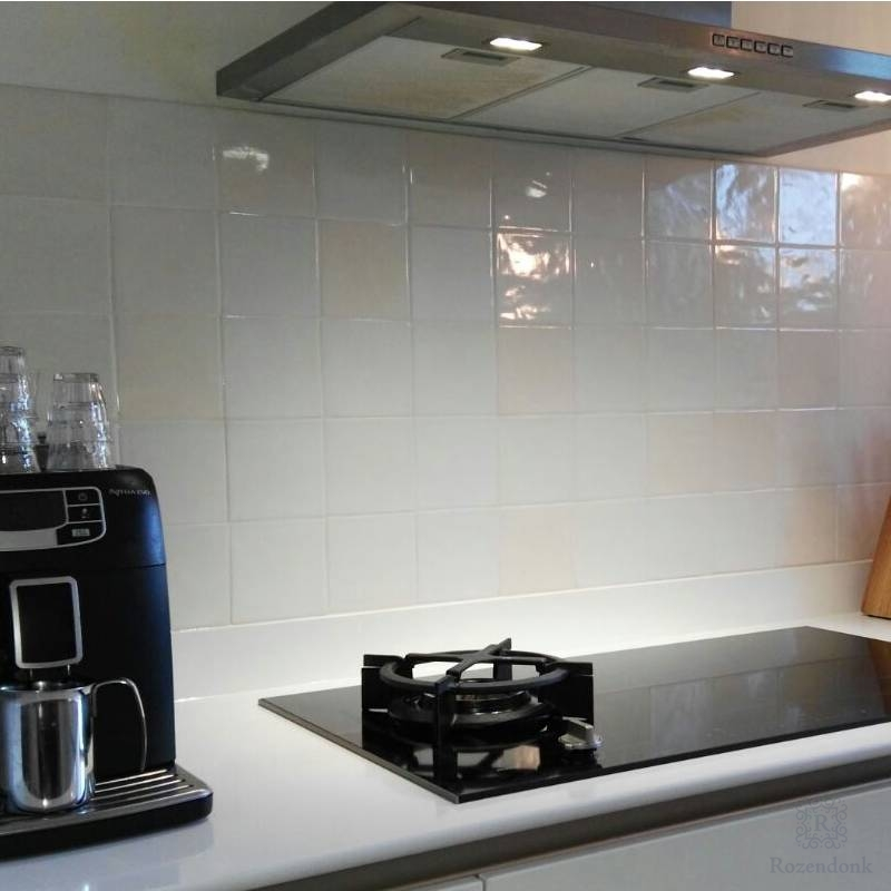 Modern kitchen with Friese witjes