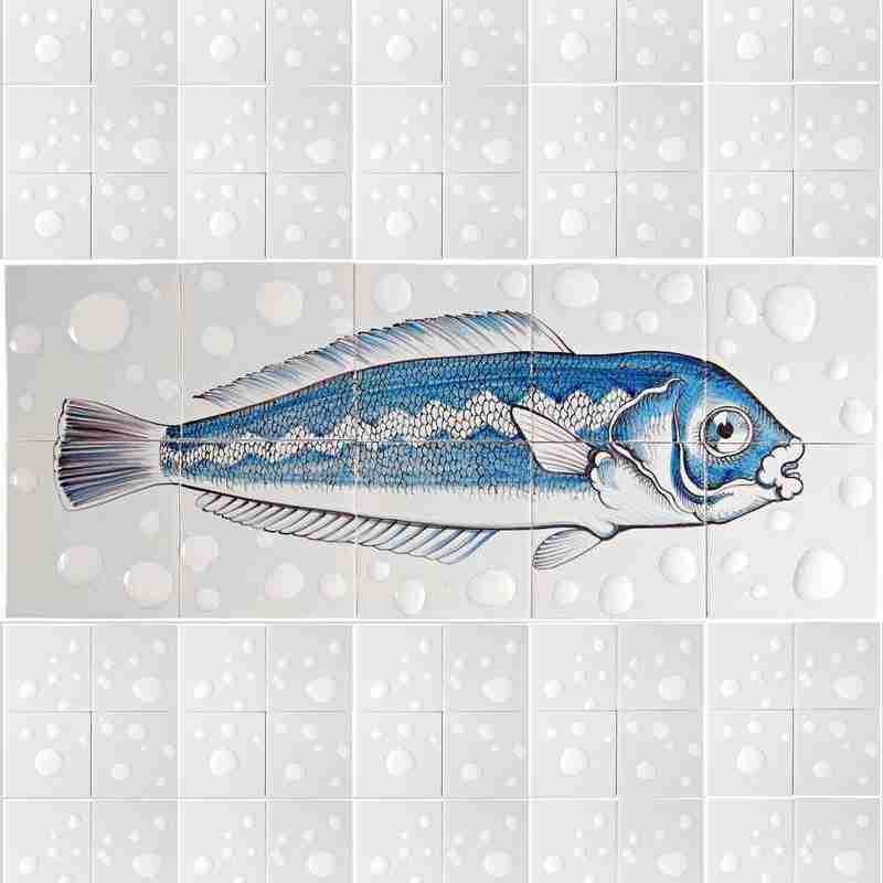 RH10 Fisk7 on 10 tiles