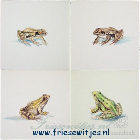 RH1-18, Frogs