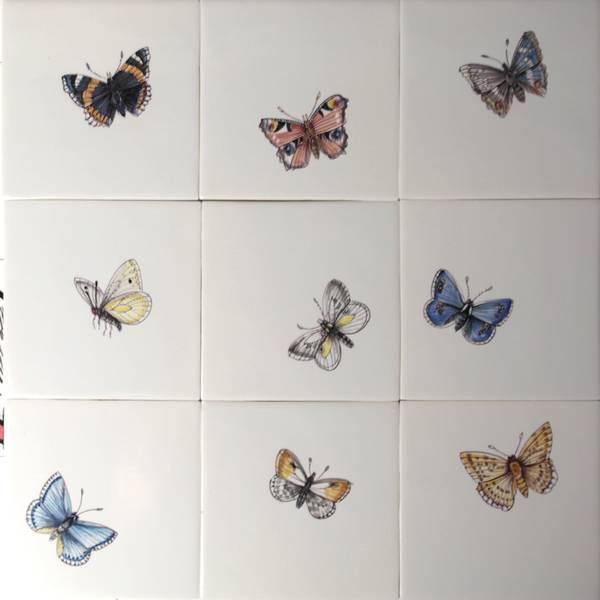 RH1-1k, Butterflies