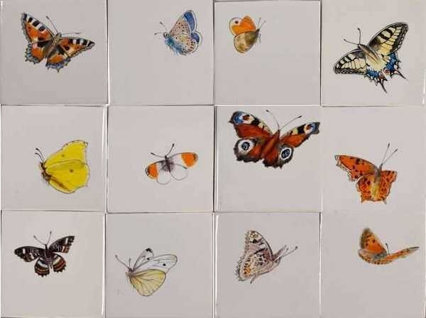 RH1-40k, Big butterflies