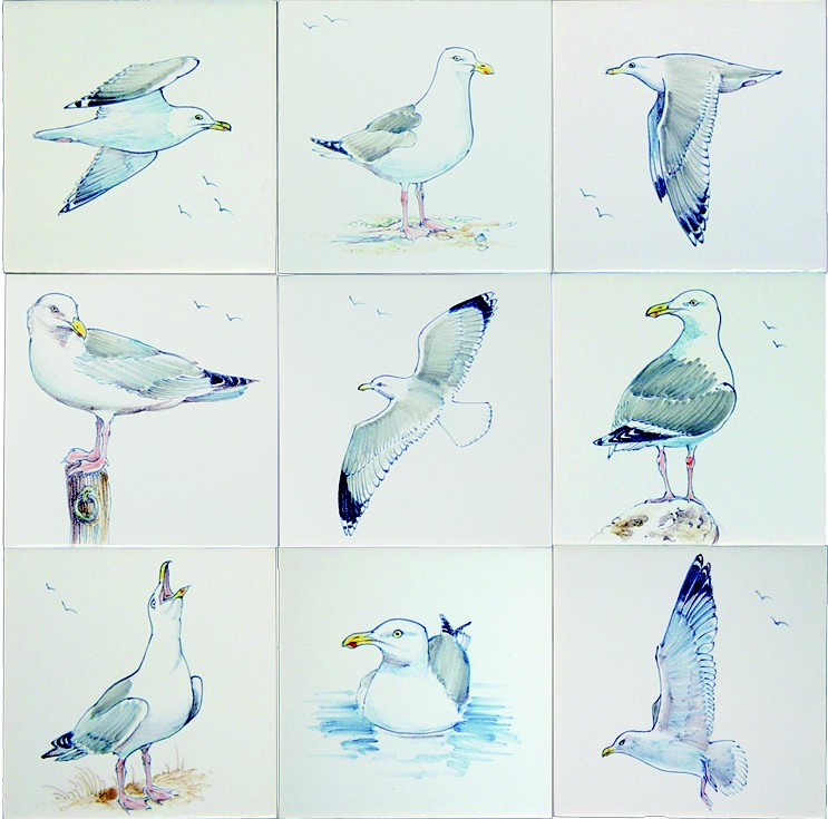 RH1-6k, 9 different seagulls