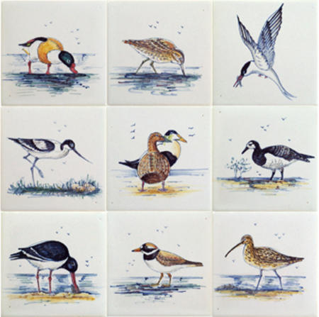 RH1-8b Birds in the Wadden Sea