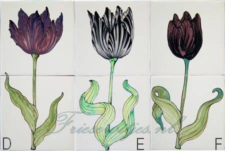 RH2-10 black tulips