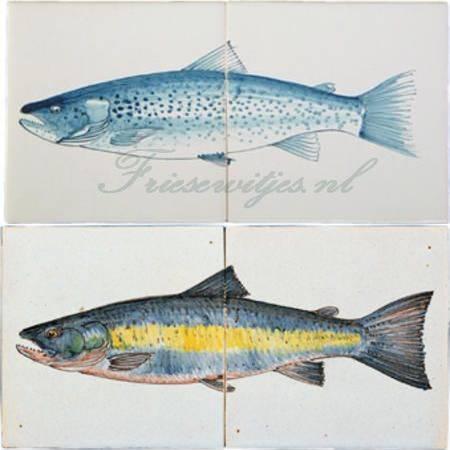 RH2-15b Salmon