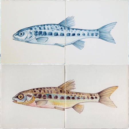 RH2-15d Fish