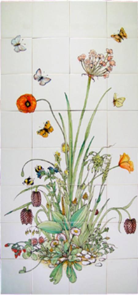 RH32-1 Flowering rush, Butomus umbellatus