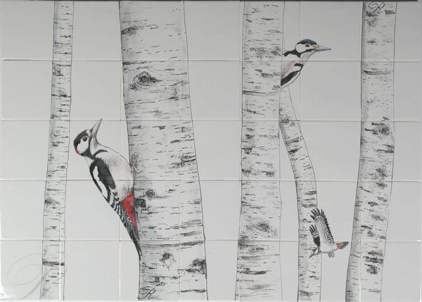 RH35-6 Woodpecker in a birch