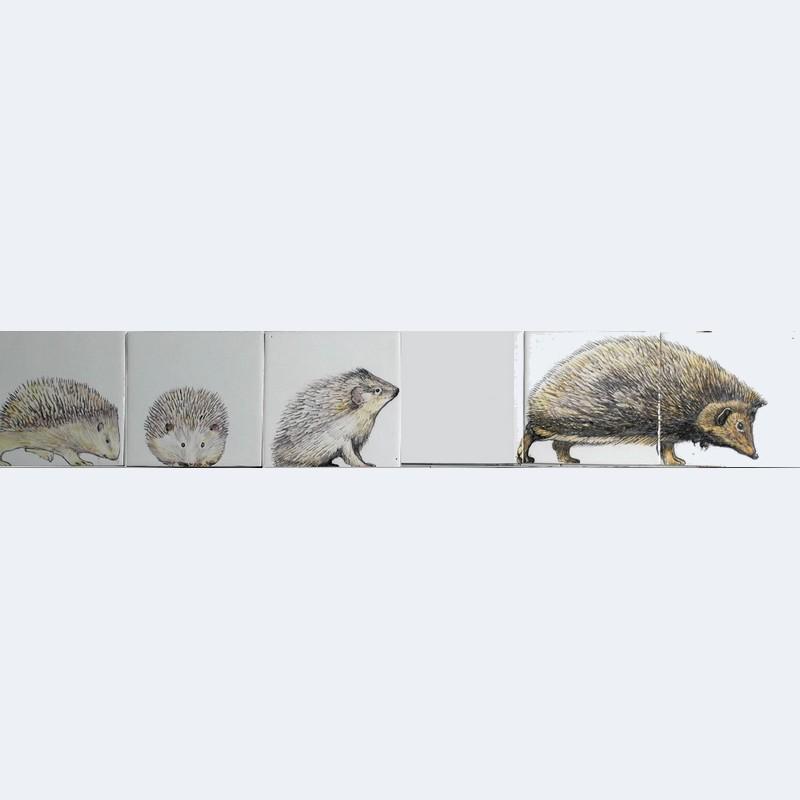 RH6-19, Hedgehogs family