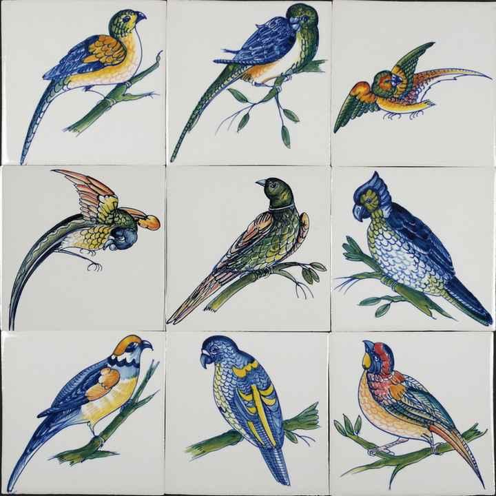 RM1-5 Parrot birds
