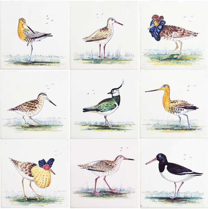 RH1-9k Birds