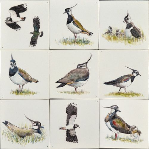 RH1-17 Lapwing painted on 1 tile
