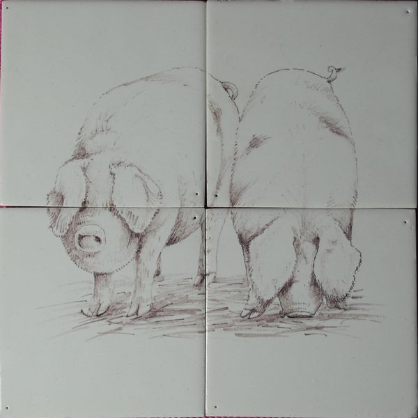 RH4-13, Two pigs outside