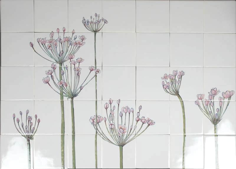 RH40-1 Flowering rush, Butomus umbellatus