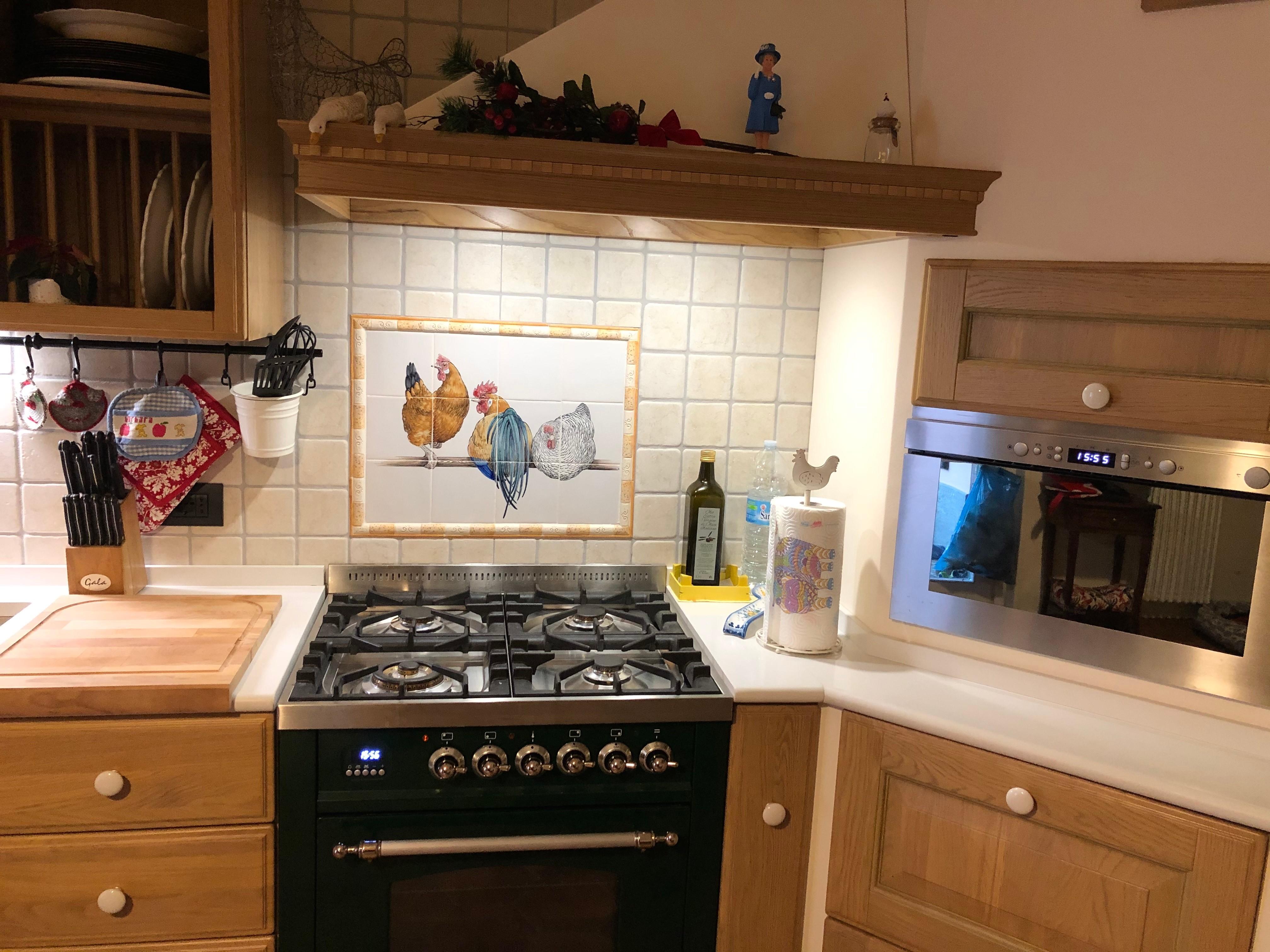 Chicken in Italian kitchen