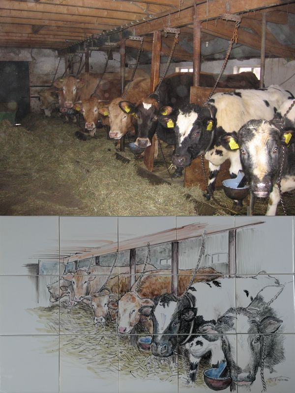 Cow stable is kitchen