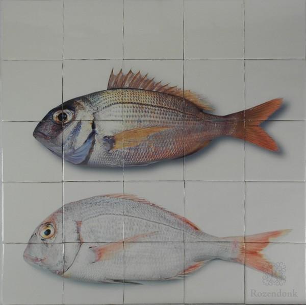 Fish printed on 20 tiles