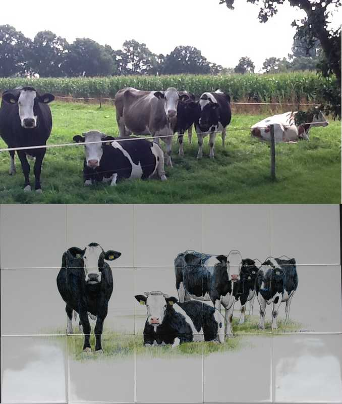 Your own cows painted