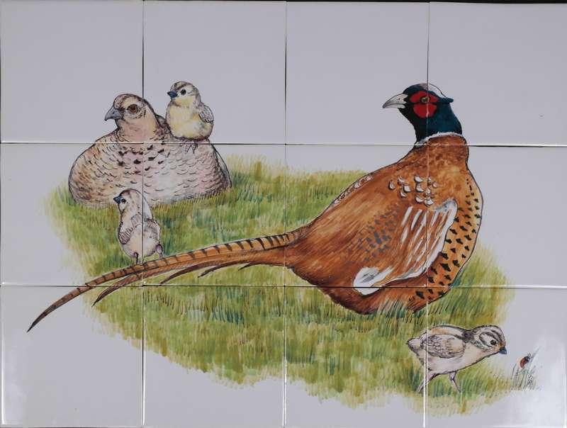 RH12-55 pheasant nest