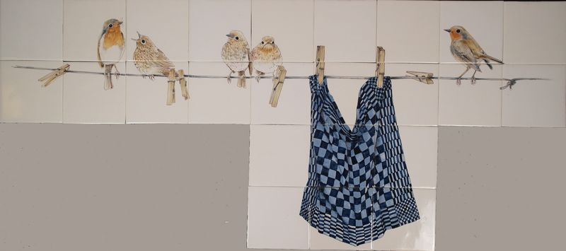 Robins on the clothesline