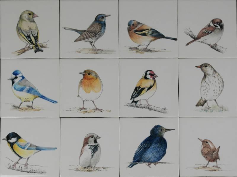 RH1-38N, Birds