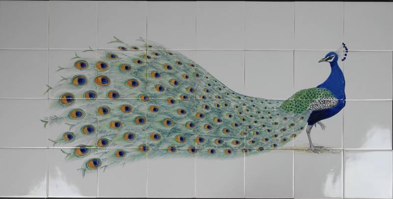 Peacock on tiles