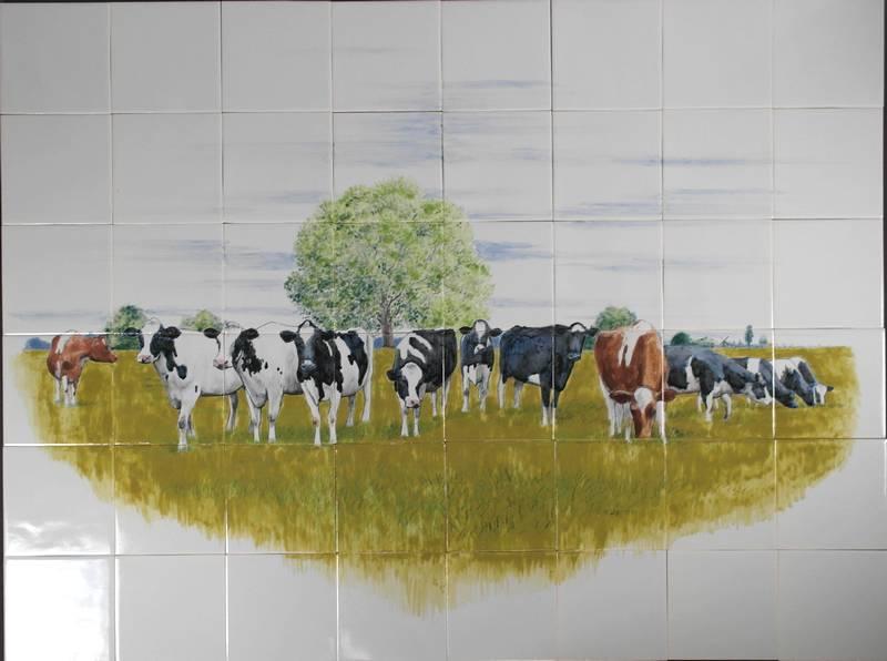 Dutch cows in France